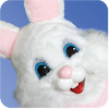 bundle-quad-bunny