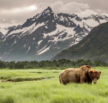3 Reasons to Visit Alaska on Your Next Group Vacation